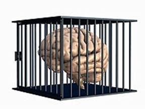 Lava Cerebros